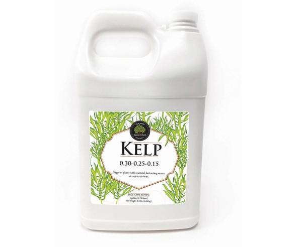 Age Old Kelp - 1 GAL