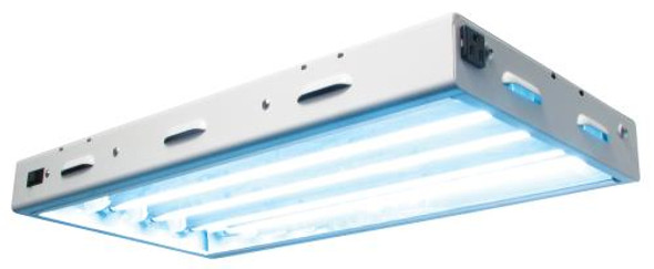 Sun Blaze T5 HO 24 - 2 ft 4 Lamp