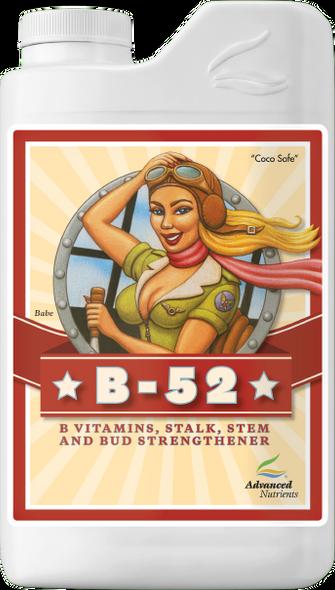 Advanced B-52 - 1L