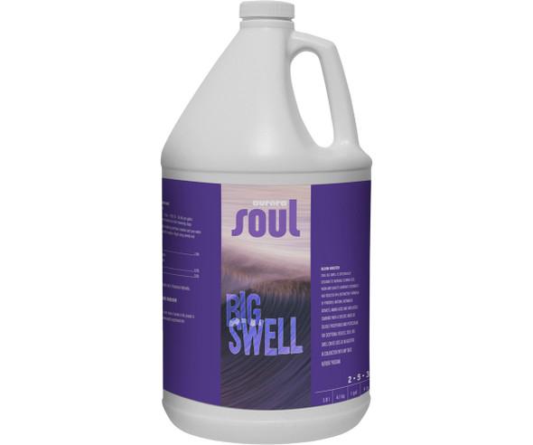 Soul Big Swell - 1 GAL