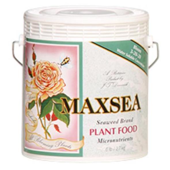 Maxsea Bloom Plant Food - 6LB