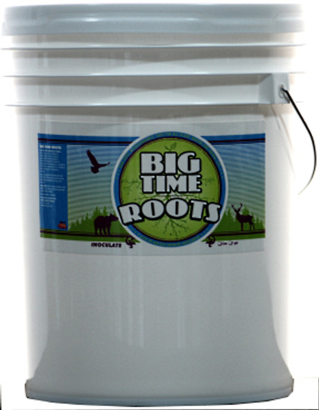 Big Time Roots - 5 GAL