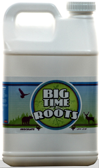 Big Time Roots - 2.5 GAL