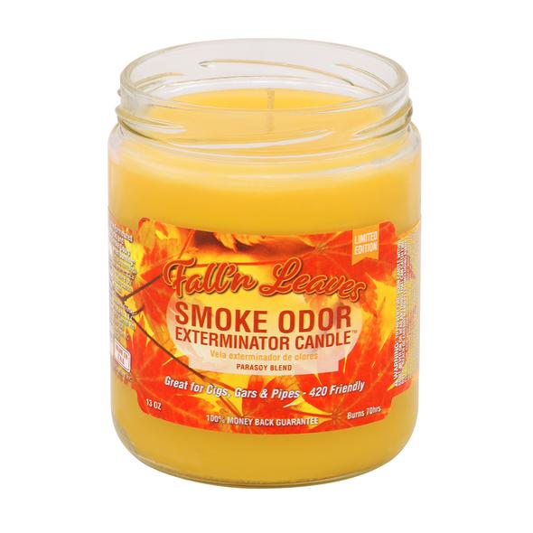 SMOKE ODOR CANDLE - FALL 'N LEAVES