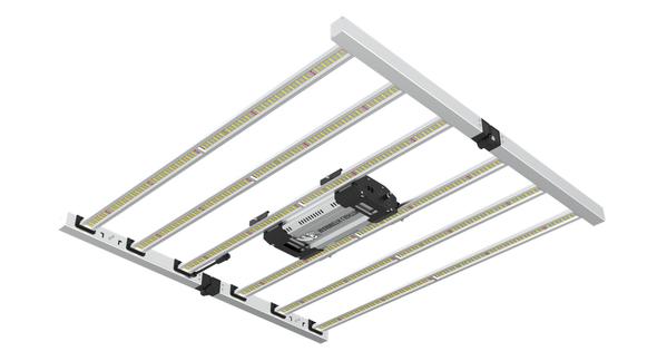 Mammoth 8 Bar Fold 800W