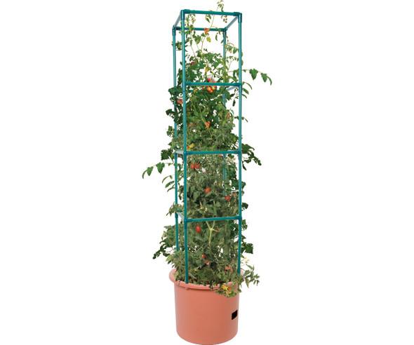 Heavy Duty Tomato Barrel w/Tower