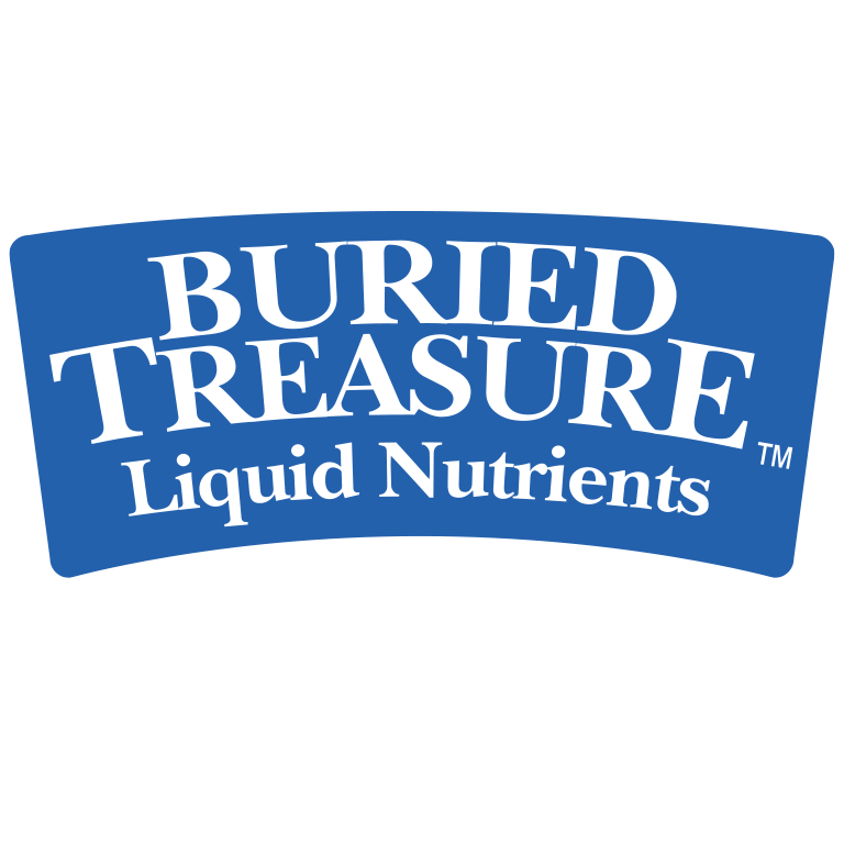 buried-treasure-logo.png
