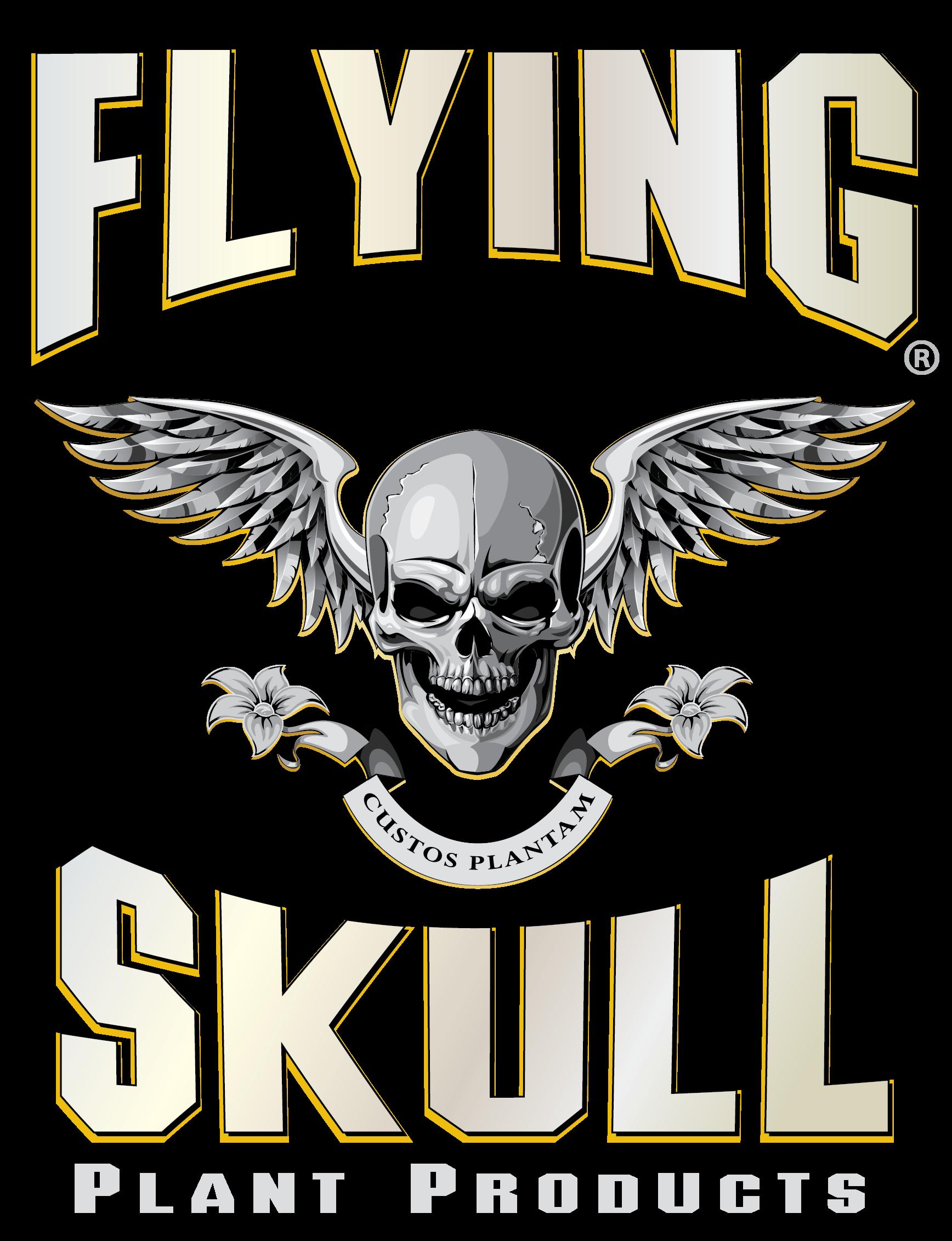 flyingskull-logo.png