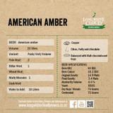 American Amber - High Gravity Wort Recipe