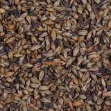 Amber Malt Grain