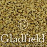 Gladfield Crystal Malt - Light