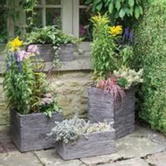 Driftwood Pots Rustic Garden Pots (Square)