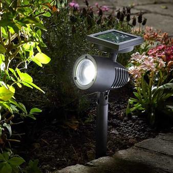Alpha 365 Solar Spotlight (103700)