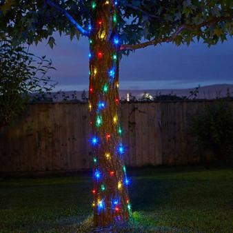 Firefly String Lights- 100 Multi Coloured LEDs (1060270)