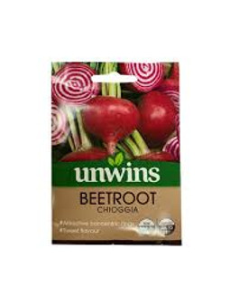 Beetroot Seeds - Chioggia- Uwins