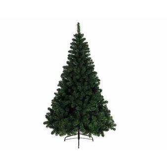 2.1m Imperial Pine Tree- Tree 23