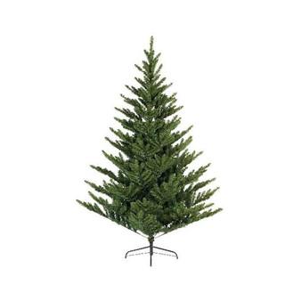 2.1 Liberty Spruce -Tree 30