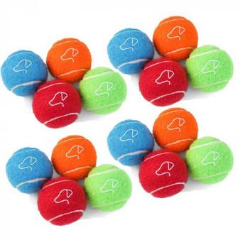 Squeaky Pooch Tennis Balls