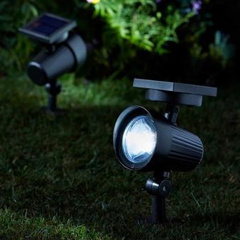 Ultra 365 Spotlight