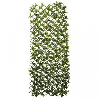 Lemon Leaf 180 x 60cm Trellis