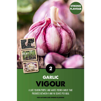 A late season, French soft-necked garlic with white and purple skinned bulbs that provide a very strong flavour.