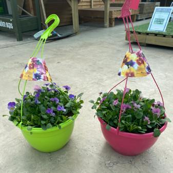Plastic Hanging Basket-Viola