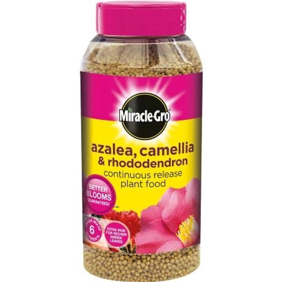 Miracle-Gro Azalea, Camellia & Rhododendron Continuous Release Plant Food 1Kg