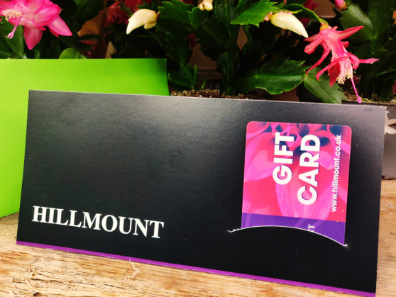 Hillmount Gift Card