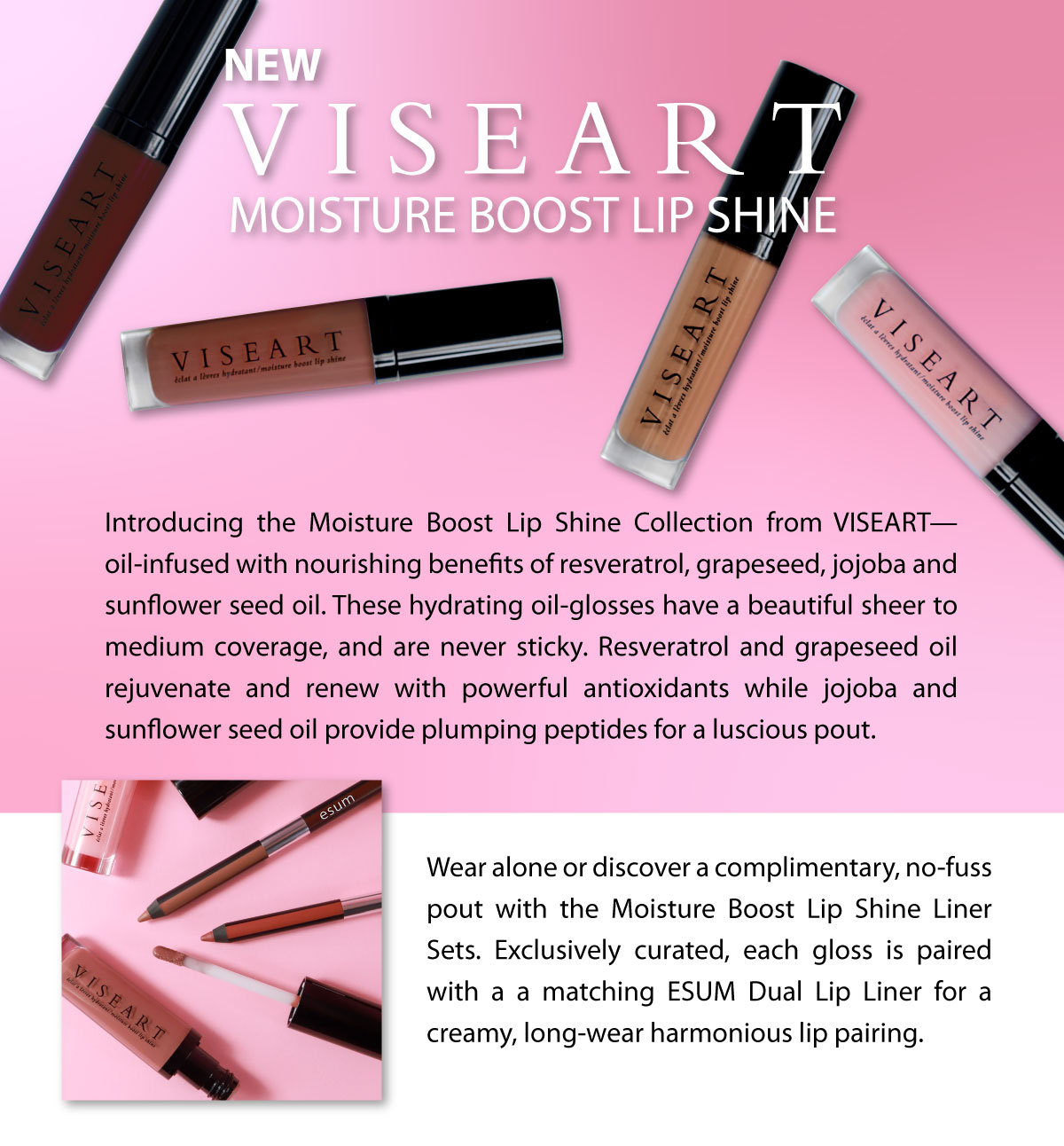 2020-viseart-lip-shine-category.jpg