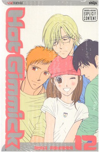 Hot Gimmick Graphic Novel Vol. 12