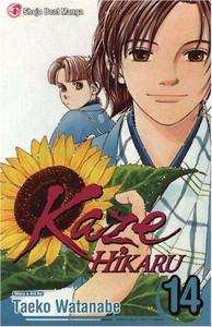 Kaze Hikaru Graphic Novel 14