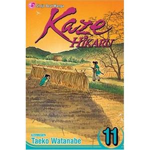 Kaze Hikaru Graphic Novel 11