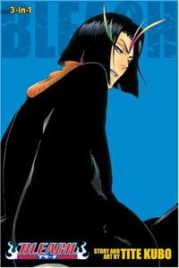 Bleach Graphic Novel Omnibus Vol. 13