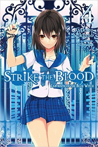 Strike the Blood Novel 04