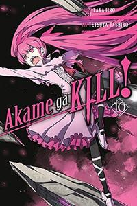 Akame ga KILL! Graphic Novel 10