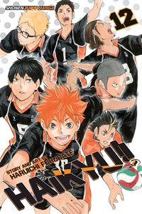 Haikyu!! Graphic Novel 12