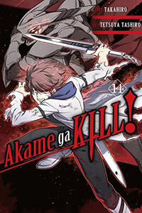 Akame ga KILL! Graphic Novel 14