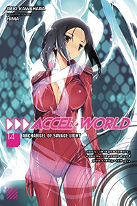 Accel World Novel 14
