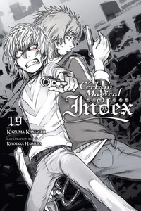 A Certain Magical Index Novel 19