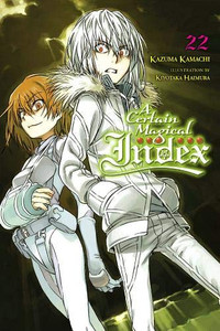 A Certain Magical Index Novel 22