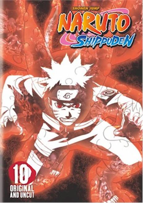 Naruto Shippuden DVD 10