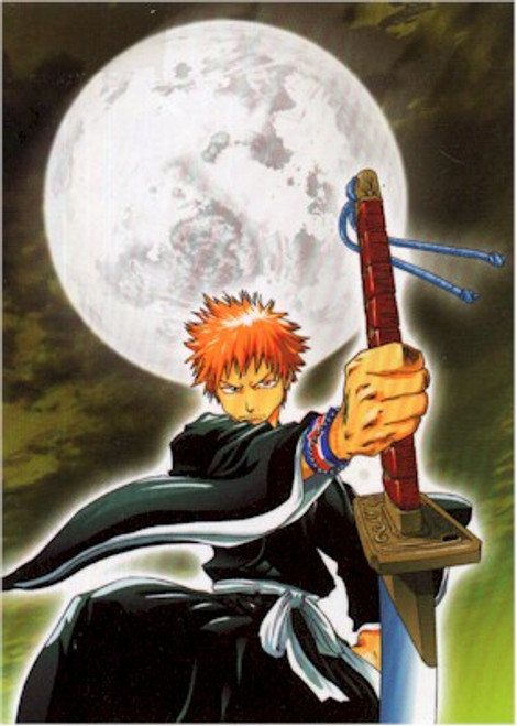 Bleach Wallscroll #162