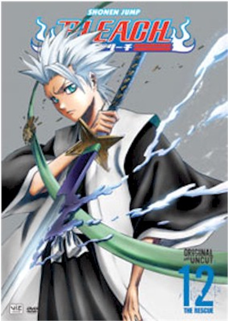 Bleach DVD 12