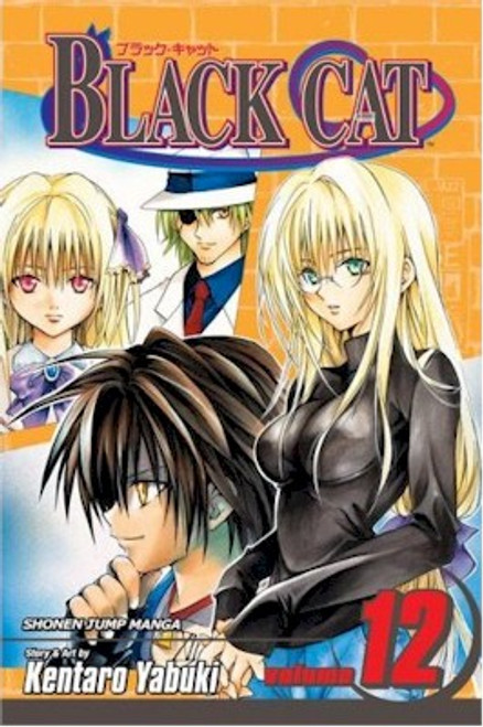 Black Cat Graphic Novel 12