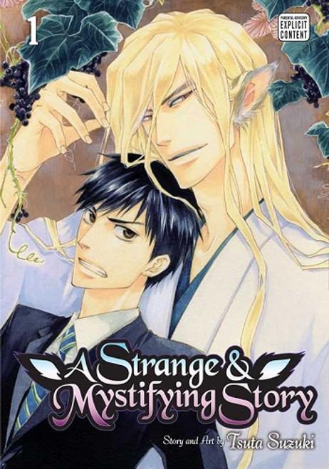 A Strange and Mystifying Story Graphic Novel 01