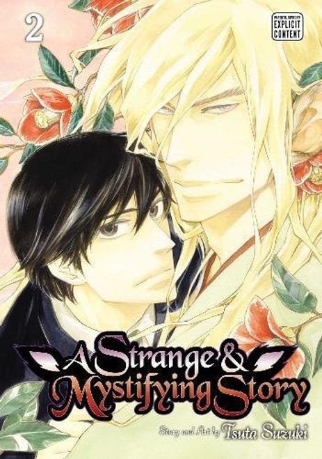 A Strange and Mystifying Story Graphic Novel 02