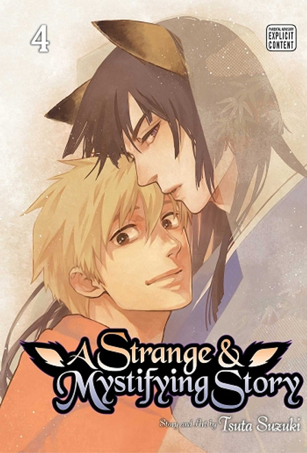 A Strange and Mystifying Story Graphic Novel 04