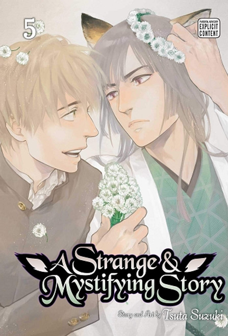 A Strange and Mystifying Story Graphic Novel 05