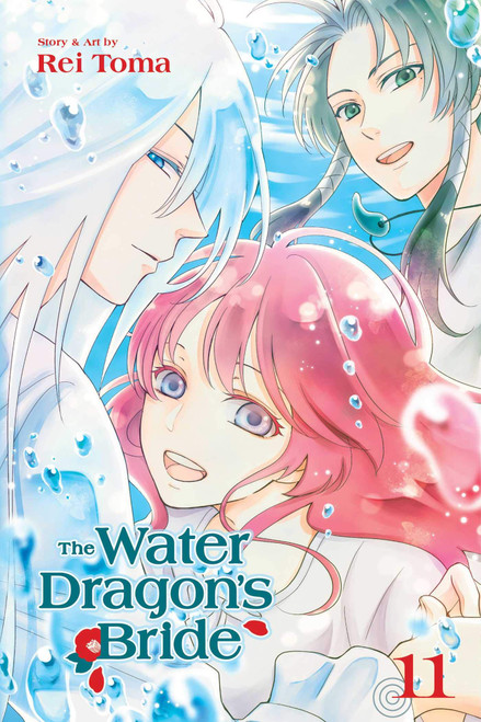 The Water Dragon's Bride Graphic Novel 11