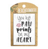 BCMG4017 Magnet Paw Prints Carded